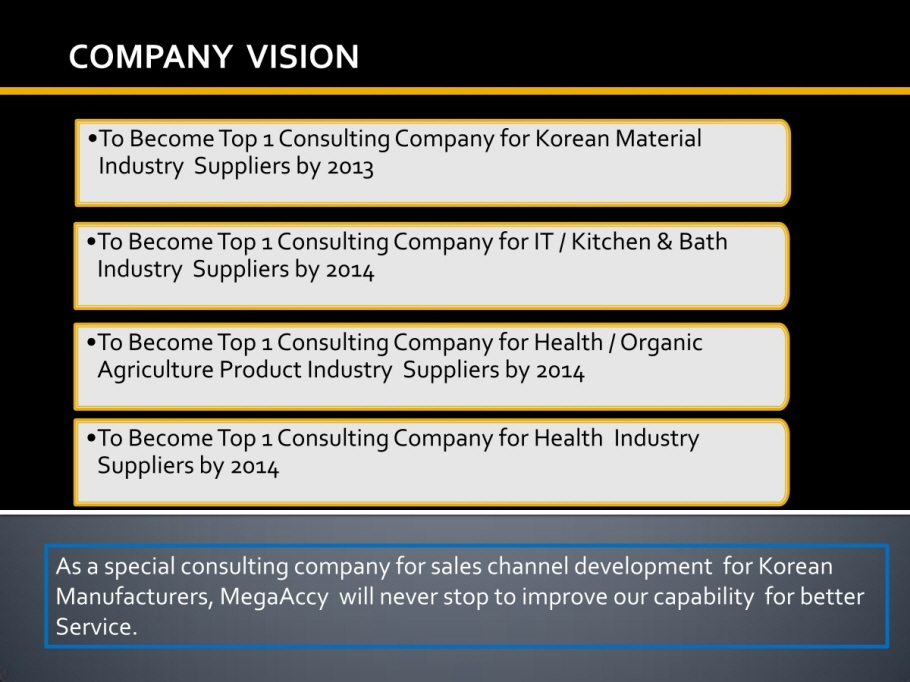 Company Vision | MegaAccy